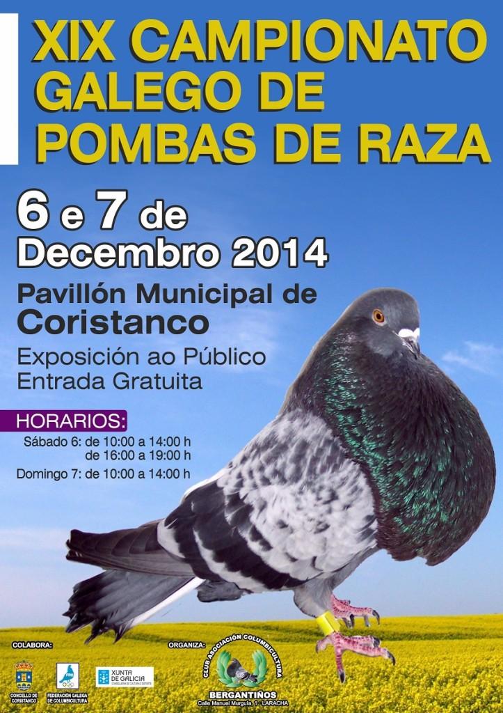 campionato galego de pombas reducida